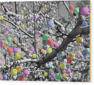 Wood Print featuring the photograph Berry Fantasy   by Raymond Earley