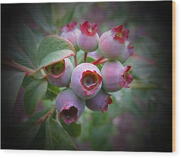 Berry Unripe Wood Print by MTBobbins Photography