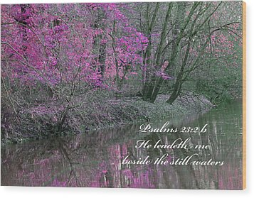 Beside Still Waters Wood Print by Lorna Rogers Photography