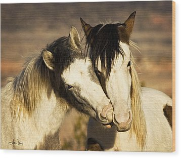 Wood Print featuring the photograph Best Friends 2009 by Joan Davis