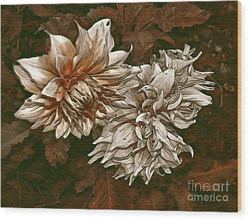 Wood Print featuring the photograph Betty's Beauty 1 by Don Wright