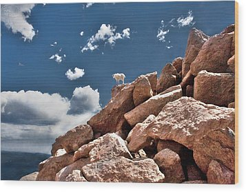 Between A Rock And A Hard Place Wood Print by Tejas Prints