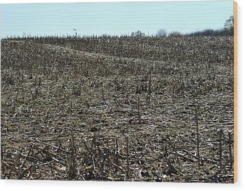 Between Sky And Field Wood Print by Joseph Yarbrough