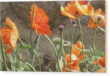 Beulah Orange Wood Print