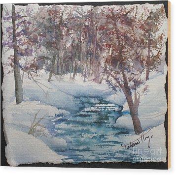 Beyond The Pond Wood Print by Mohamed Hirji