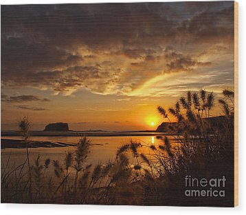 Wood Print featuring the photograph Beyond The Reeds by Trena Mara