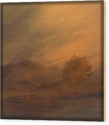 Beyond The Rowan Tree Wood Print by Liz  Alderdice