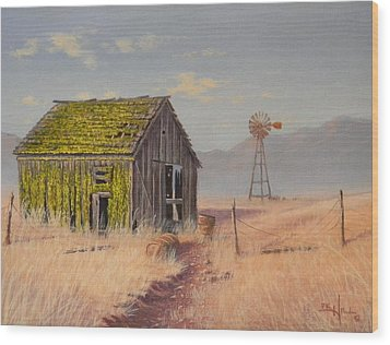 Bickelton Barn Wood Print