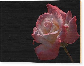 Wood Print featuring the photograph Bashful by Doug Norkum