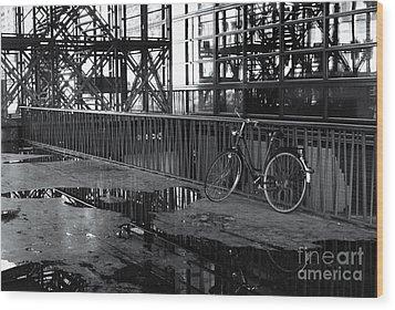 Wood Print featuring the photograph Bicycle Alone by Maja Sokolowska