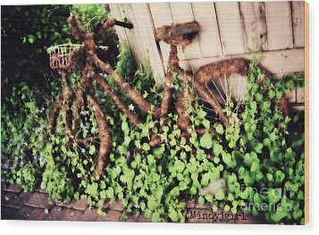 Wood Print featuring the photograph Bicycle  by Mindy Bench