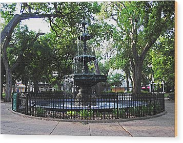 Bienville Fountain Mobile Alabama Wood Print by Michael Thomas