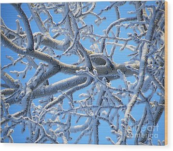 Bifurcations In White And Blue Wood Print by Brian Boyle