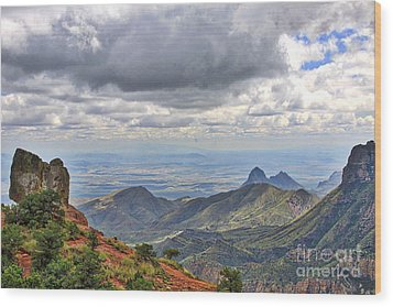 Big Bend National Park Wood Print by Jill Smith