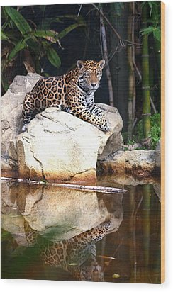 Big Cat Wood Print by Diane Merkle