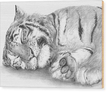 Big Cat Nap Wood Print