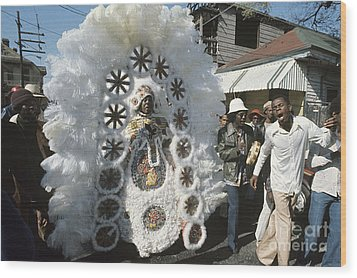 Big Chief Mardi Gras Indian Wood Print by Christopher R Harris