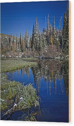 Big Cottonwood Canyon  Wood Print by Richard Cheski