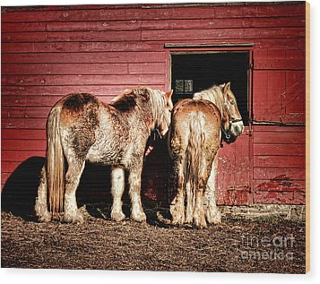 Big Horses Wood Print by Olivier Le Queinec