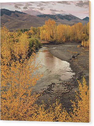 Big Lost River In Autumn Wood Print by Leland D Howard