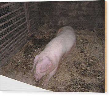 Big Pig Wood Print