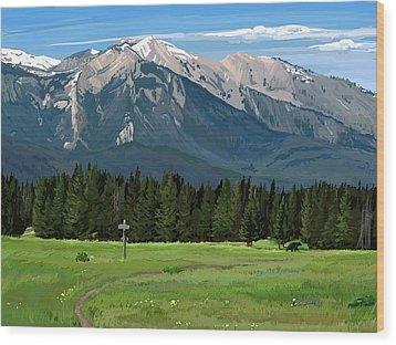 Big Prairie Trail Junction Wood Print