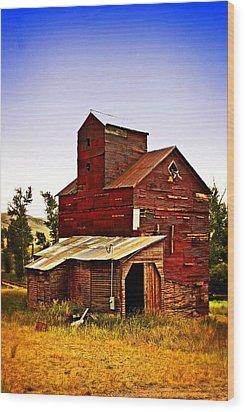 Big Red Grain Elevator Wood Print by Marty Koch