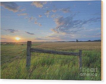 Big Sky Alberta Wood Print by Dan Jurak