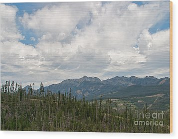 Wood Print featuring the photograph Big Sky Cloudscape by Charles Kozierok