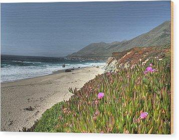 Big Sur Beach Wood Print by Jane Linders