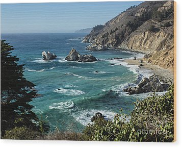 Big Sur Coast From Julia Pfeiffer Burns Wood Print by Suzanne Luft