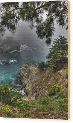 Big Sur Julia Pfeiffer State Park-1 Central California Coast Spring Early Afternoon Wood Print by Michael Mazaika