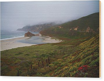 Big Sur Wood Print by Tom Kelly