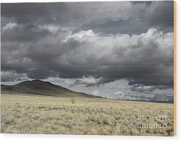 Big Volcano Field Wood Print by Andrea Hazel Ihlefeld