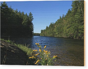 Wood Print featuring the photograph Bigelow Hollow  by Neal Eslinger