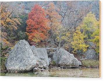 Bigtooth Maple And Rocks Fall Foliage Lost Maples Texas Hill Country Wood Print by Silvio Ligutti
