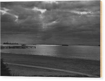 Wood Print featuring the photograph Bike Path And Pier by Joseph Hollingsworth