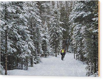 Biking The Wilderness Wood Print