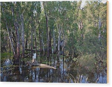 Billabong Wood Print by Carole Hinding