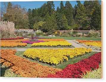 Biltmore Gardens  Wood Print by Lynn Bauer
