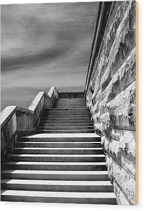 Biltmore Stairs Asheville Nc Wood Print by William Dey