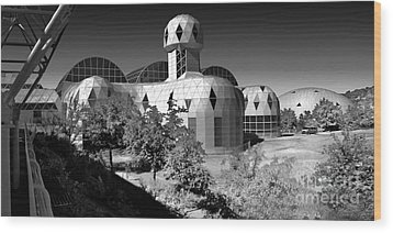 Biosphere 2 Wood Print by Gregory Dyer