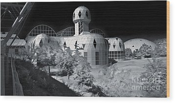 Biosphere2 - Black And White Wood Print by Gregory Dyer
