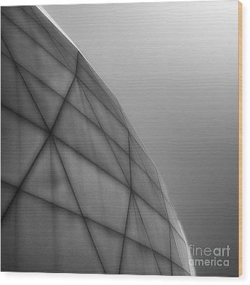 Biosphere2 - Dome Wood Print by Gregory Dyer