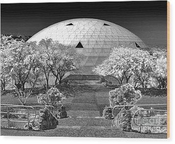 Biosphere2 - Dome Panorama Wood Print by Gregory Dyer