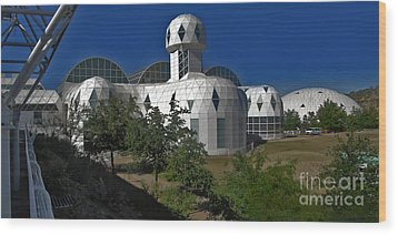 Biosphere2 Wood Print by Gregory Dyer