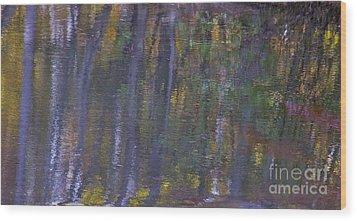 Birch Reflections Wood Print by Cindy Lee Longhini