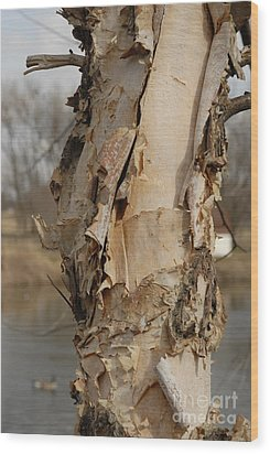 Wood Print featuring the photograph Birch Tree By The River by Lena Wilhite