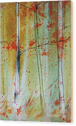 Birch Tree Forest Closeup Wood Print by Jani Freimann