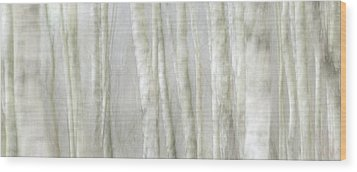 Birch Tree Impression No 1 Wood Print by Andy-Kim Moeller